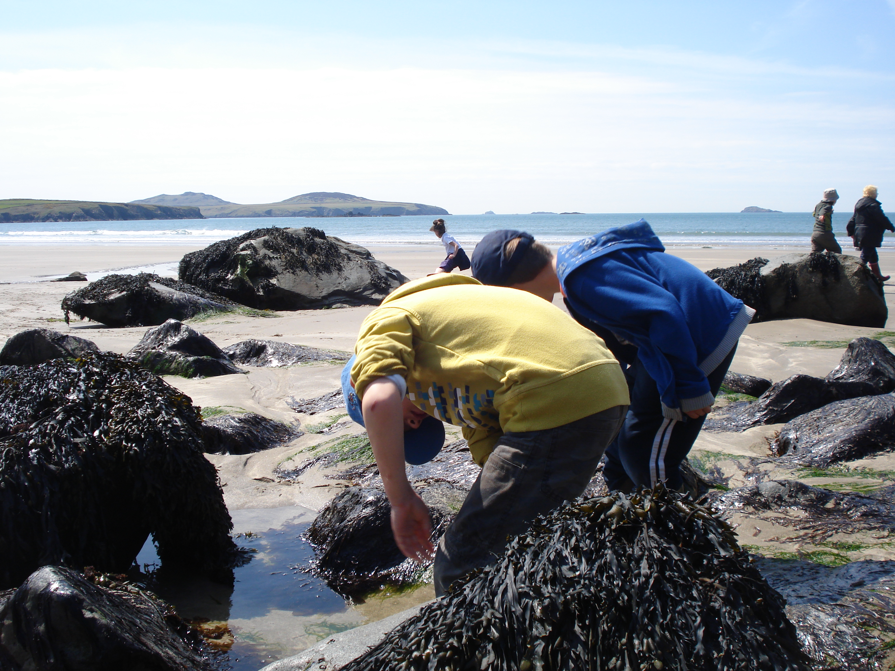 Rockpooling-whitesands