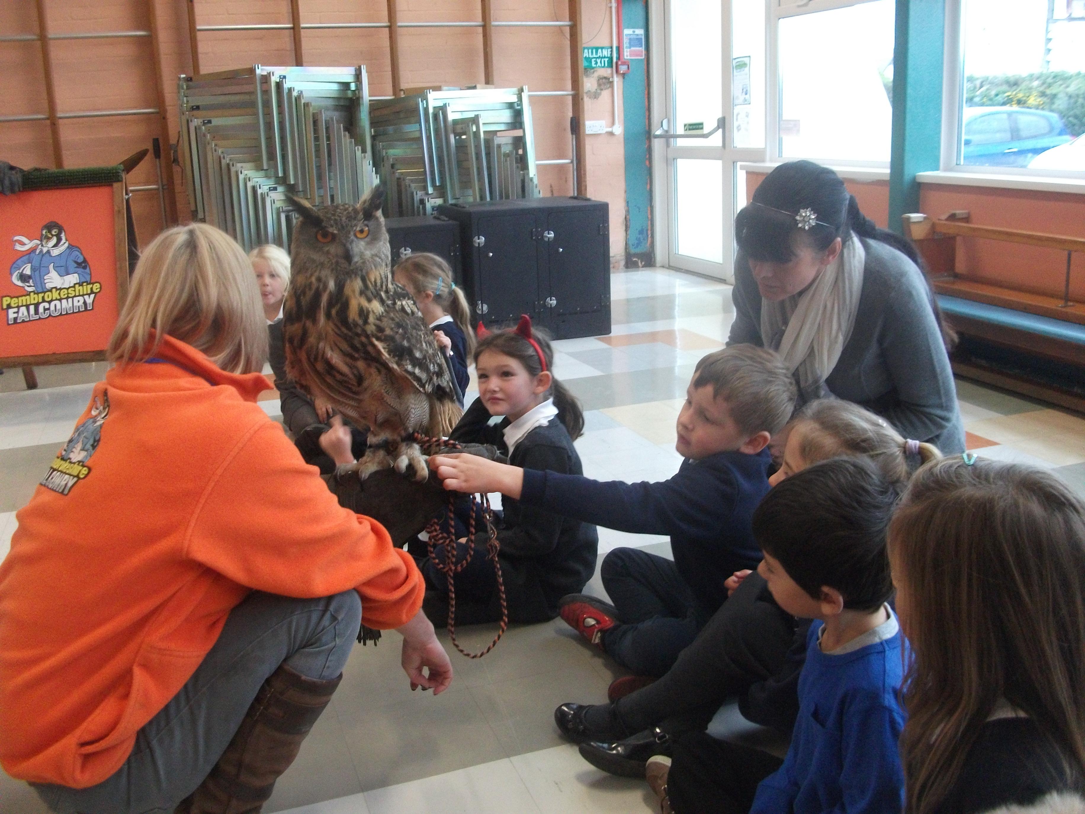 Owl-talk-8-11-16-021